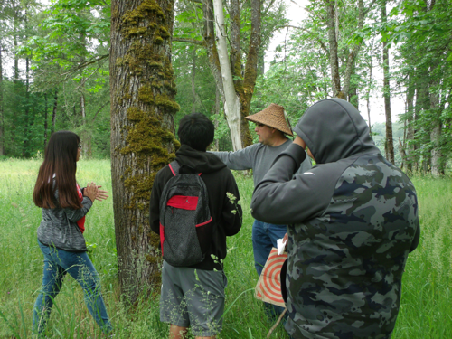 instructor teaching students about moss on tree