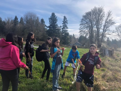 Students gathering carrots