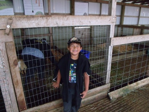 2nd grader in the petting area
