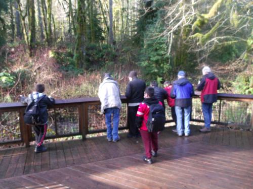 McLane Nature Trail field trip
